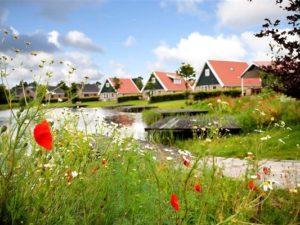 Overig LE006 - Nederland - Friesland - 36 personen afbeelding