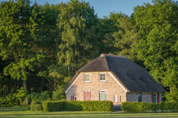 Overig OV247 - Nederland - Overijssel - 12 personen afbeelding
