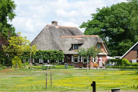 Vakantiepark Mölke 16 - Nederland - Overijssel - 14 personen