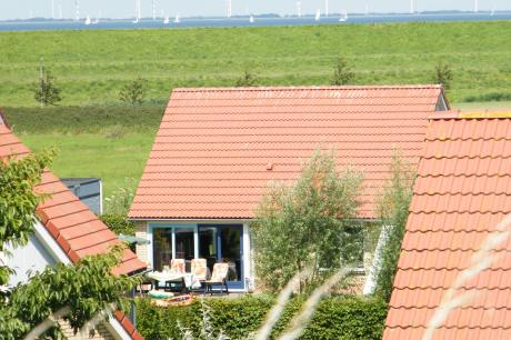 Villavakantiepark IJsselhof 3 - Nederland - Noord-Holland - 8 personen